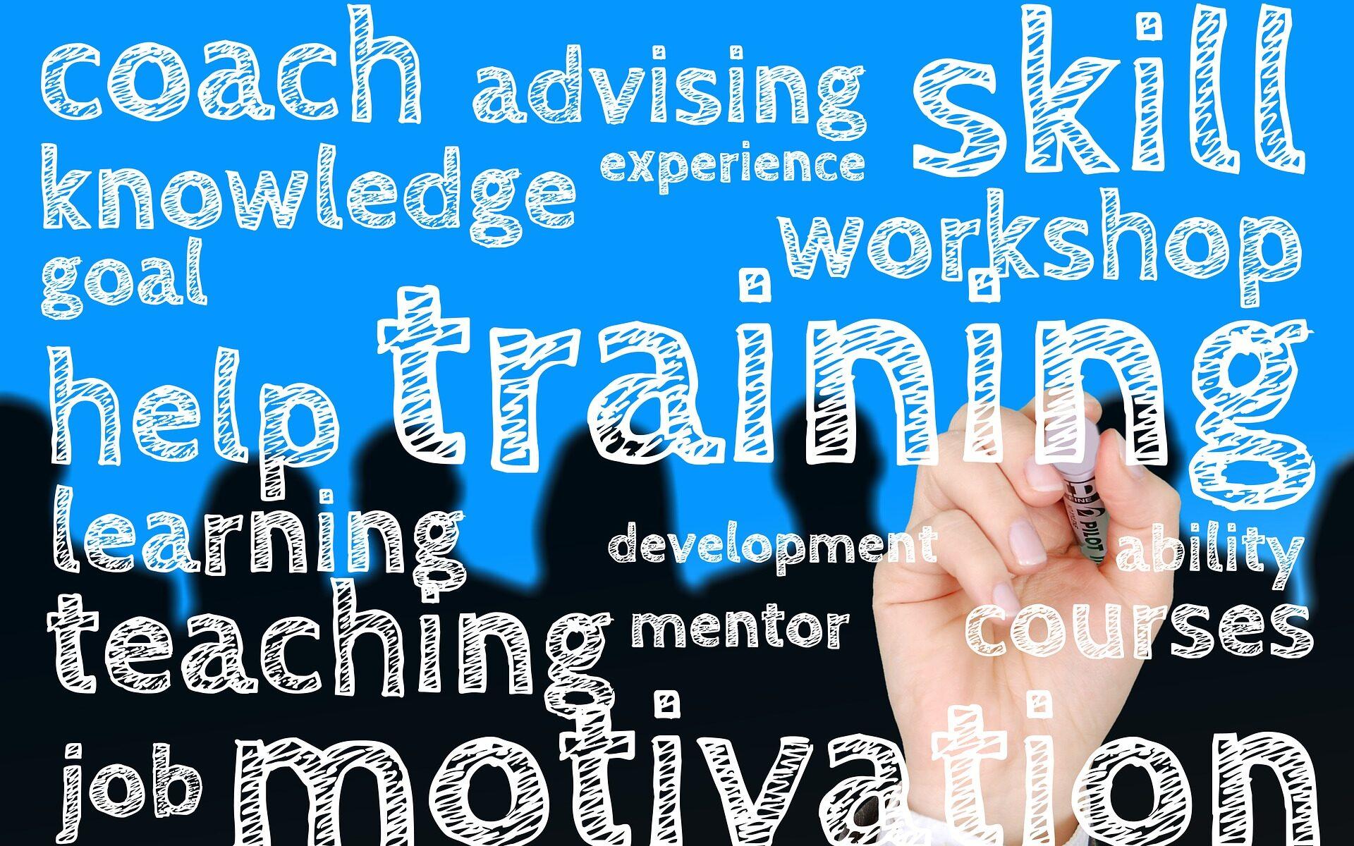experiencia-servicios-clientes